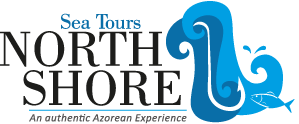 North Shore Sea Tours - an authentic azorean experience